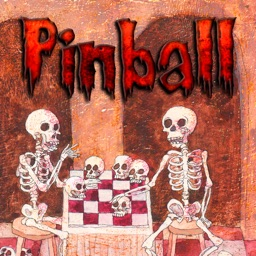 Pinball - Two Skeletons