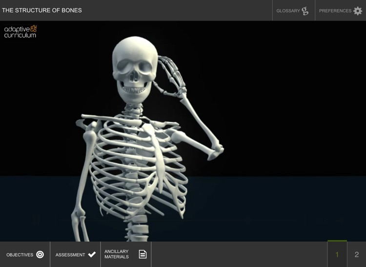 The Structure And Functions Of Bones By Sebit Llc