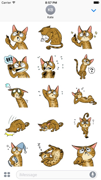 Misty the Cat. Stickers by Design73