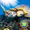 Turtle Family Simulator