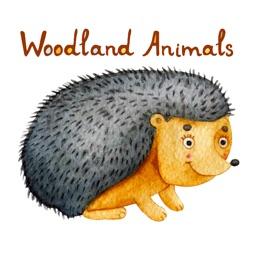 Woodland Animals! Stickers