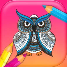 Activities of Adult Coloring for Fun