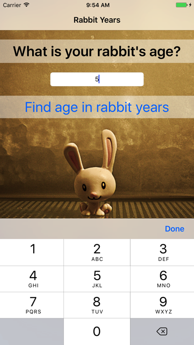 点击获取Rabbit Years - Simple Converter For Rabbit Years