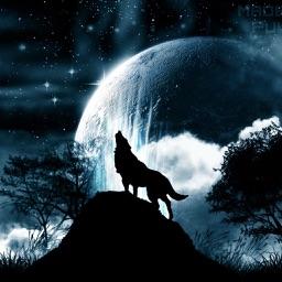 狼人杀桌游助手
