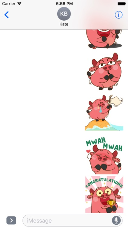 Funny Angry Pig