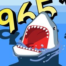Activities of Shark Numbers