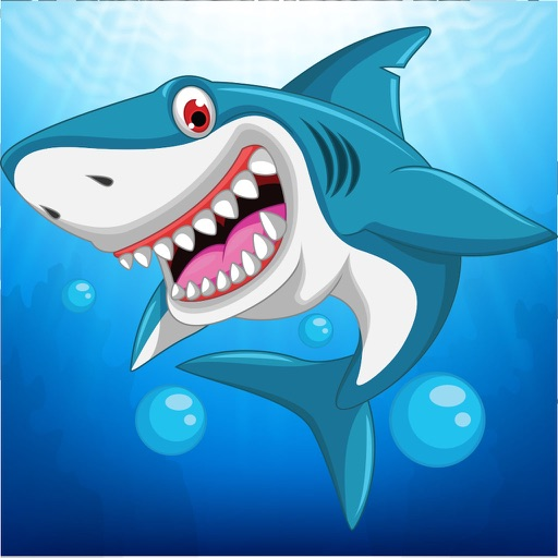 Sea Animal Jigsaw Puzzles for Toddlers Kids Games iOS App