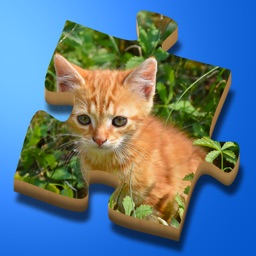 Super Jigsaws Baby Animals