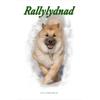 Rallylydnad
