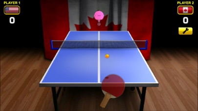 World Cup Table Tennis Screenshot 2