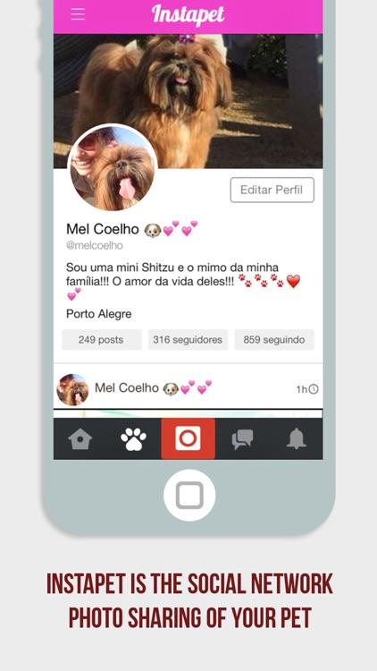 Instapet - Social Network for your Pet