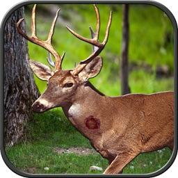 Wild Hunting: Jungle Animal Sniper Shoot