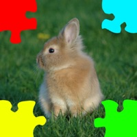 Codes for Baby Rabbits Jigsaw Puzzles Hack