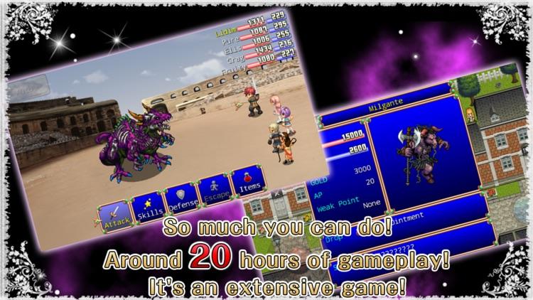 RPG Destiny Fantasia screenshot-3