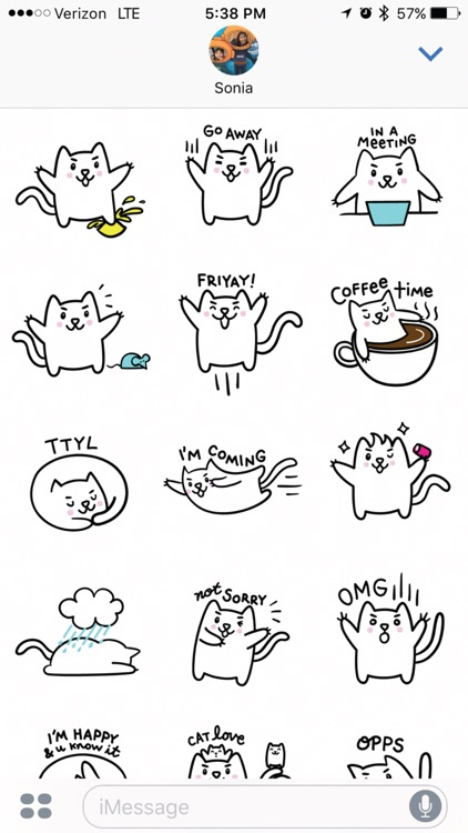Meowtastic Life - Animated Cat Stickers