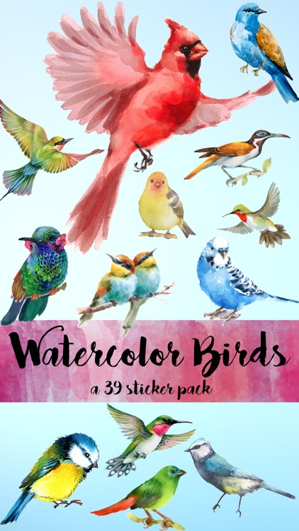 Watercolor Birds Sticker Pack