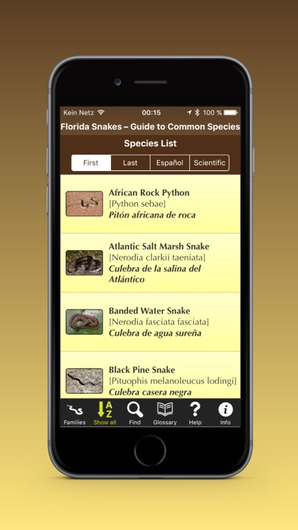 Florida Snakes – Guide to Common Species
