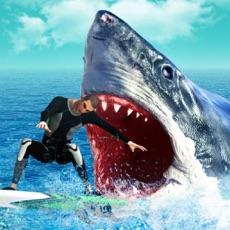 Activities of Hungry Predator Evolution: Shark Attack Simulation