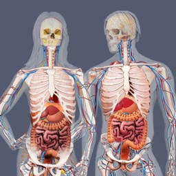 Build a Body: Biology Systems