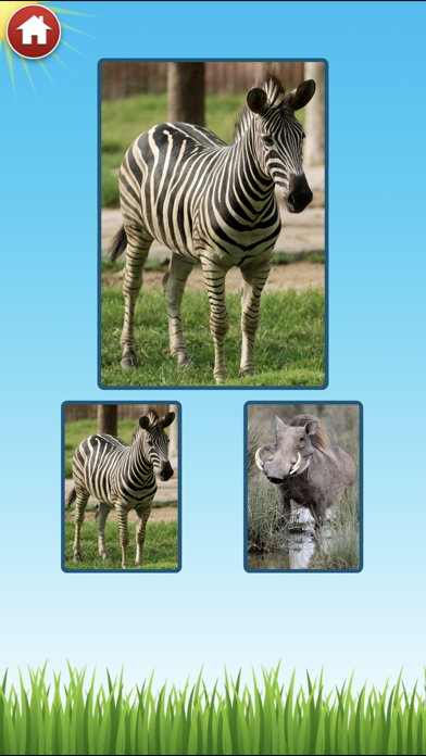 Zoo Sounds - Fun Educational Games for Kids screenshot three