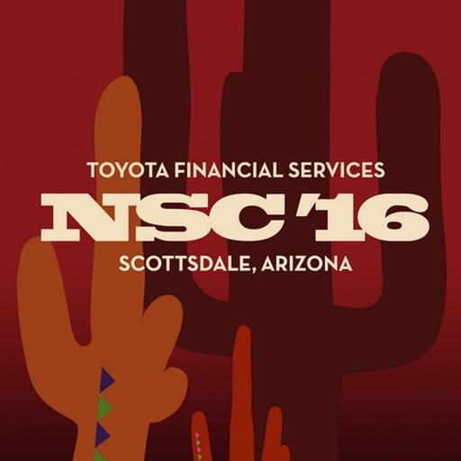 TFS NSC 2016 icon