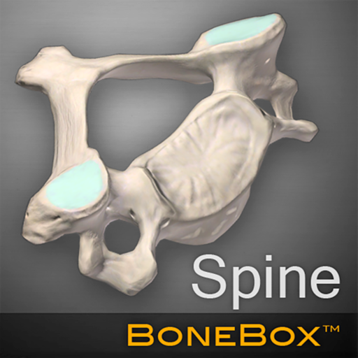 BoneBox - Spine Viewer