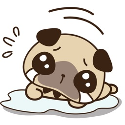 Cute pug puppy for iMessage Sticker