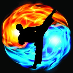 Taekwondo Martial Art HD Wallpapers
