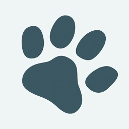 Paws -Dog Breed Identifier - Camera AI Recognition