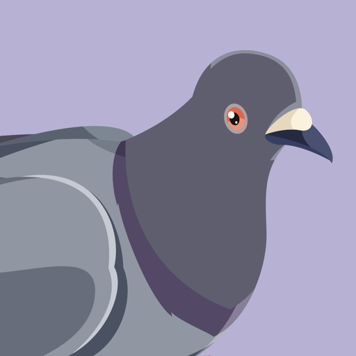 Trash Birds - Funny Realistic Pigeons