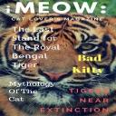 iMeow:Cat Lovers Magazine