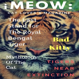 iMeow:Cat Lovers Magazine