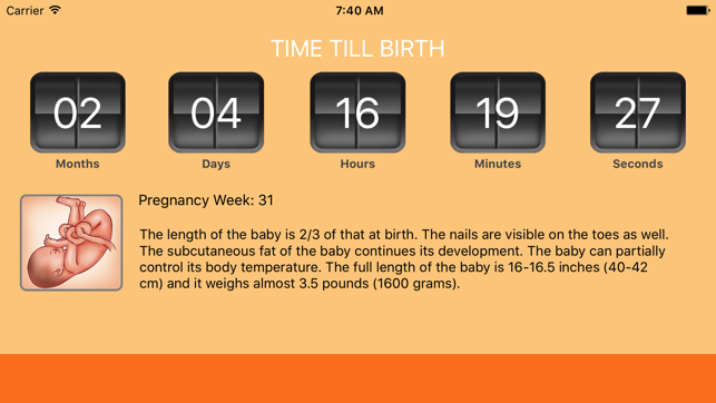 womanlog pregnancy calendar on the app store