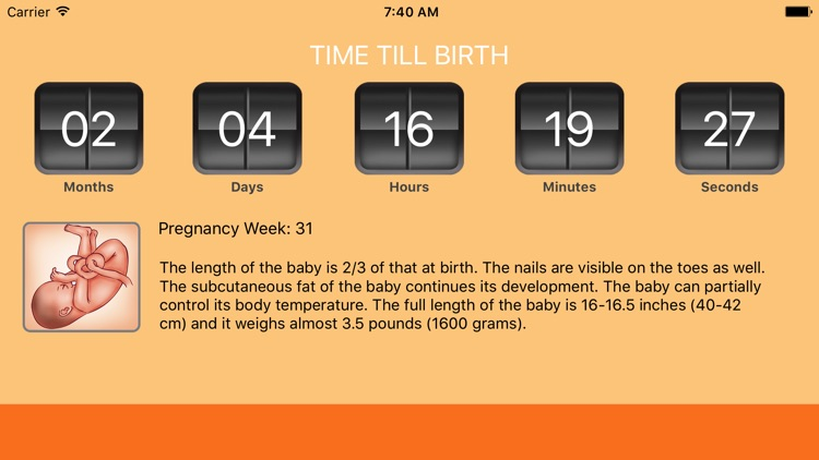 WomanLog Pregnancy Calendar screenshot-4