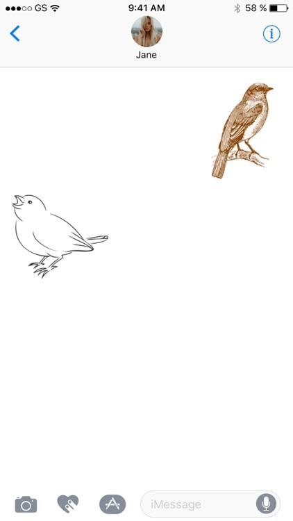 Bird Sticker Pack!