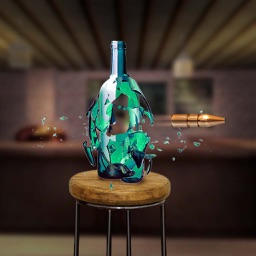Bottle Shoot 3D Challenge Game