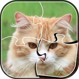 Little Kitty Jigsaw Puzzle - Kitty Games