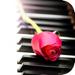 26.轻音乐系列之钢琴曲篇(100首)