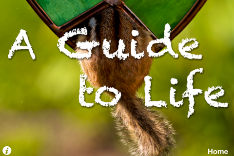 A Guide To Life - náhled
