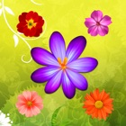 Flower Beautiful Puzzle Match 3 Games icon