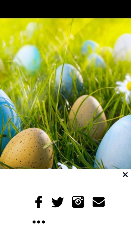 Easter Egg Wallpapers - Bunny Eggs Painting Photos screenshot-3
