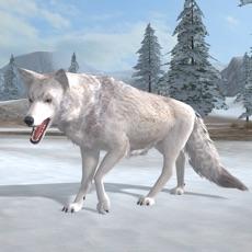 Activities of Arctic Wolf