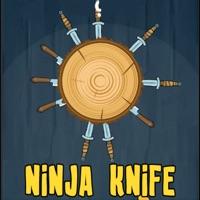 Codes for Ninja Knife Hit Game Hack