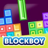 Codes for BlockBoy - Mino Puzzle Hack