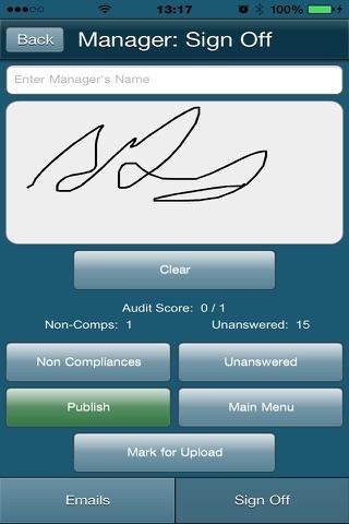 AuditForm - náhled