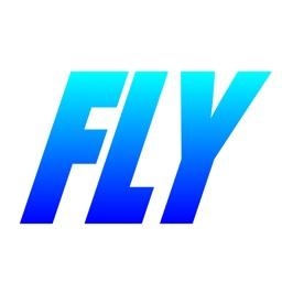 FlyOrDelay