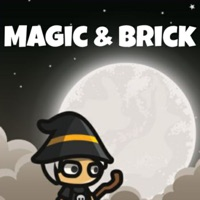 Codes for Magic & Brick Hack