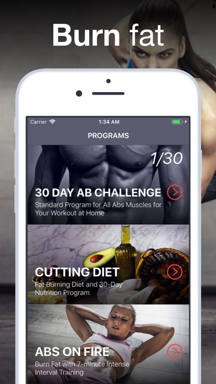 Six Pack Abs + Fat Burn Diet