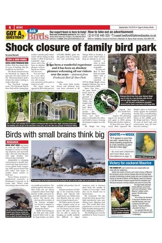 Cage & Aviary Birds - náhled