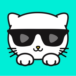 Kitty Live -#1 Live Video Chat